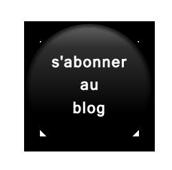 bouton abonnement blog