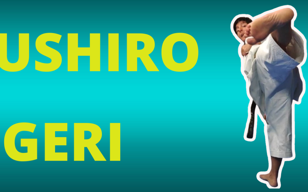 RÉUSSI TON USHIRO YOKO vs GERI : Coups de pied retourné – KARATE – Jessica et Sabrina BUIL